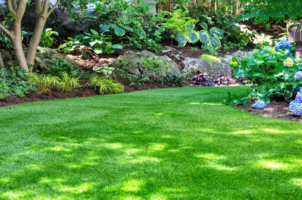 Ft Worth, Artificial Grass, Synthetic Grass, Turf